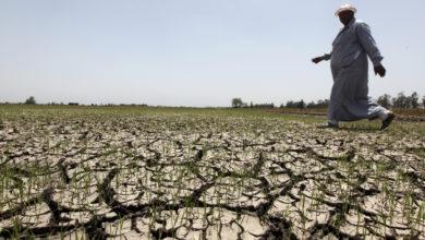 الفقر المائي في مصر