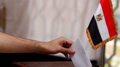 الانتخابات البرلمانية المصرية 2020